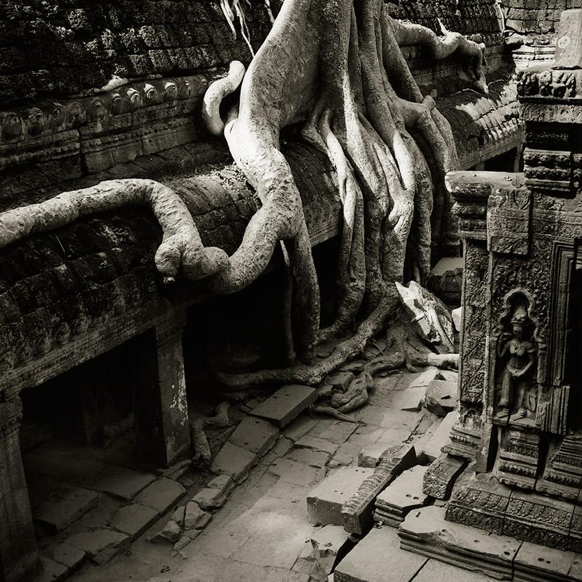 Le Temple du Ta Prohm